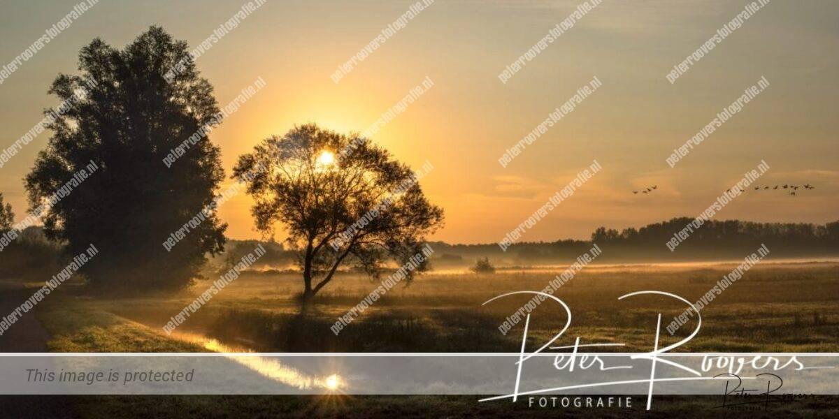 Peter Roovers Fotografie, Sunrise Haagse Beemden, Rietdijk